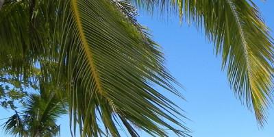 Palawan – perła Filipin